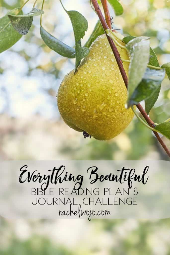 He has made everything beautiful in its time. Ecclesiastes 3:11 the Everything Beautiful Bible Reading Plan & Journal Challenge! What's this monthly Bible reading plan all about? Savoring God's seasonal elegance. In the Purposeful Pause Bible reading plan, the Scripture passages are focused on waiting on God. How to wait, why we wait, and God's love through the wait. Everything Beautiful is about focusing the eyes of our hearts on the beauty of each season of life.