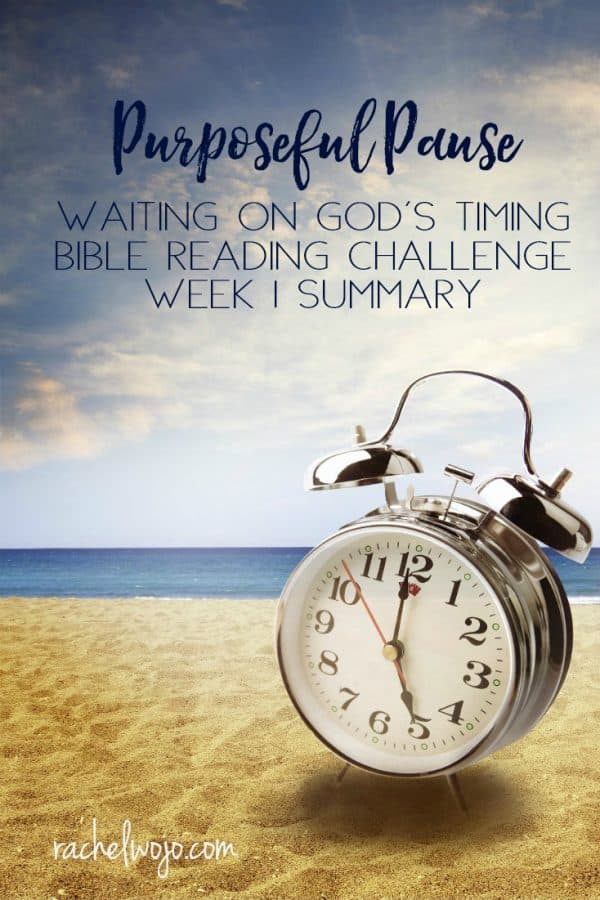 Purposeful Pause Bible Reading Challenge Week 1 Summary
