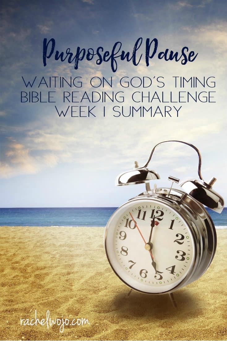 Purposeful Pause Bible Reading Challenge Week 1 Summary