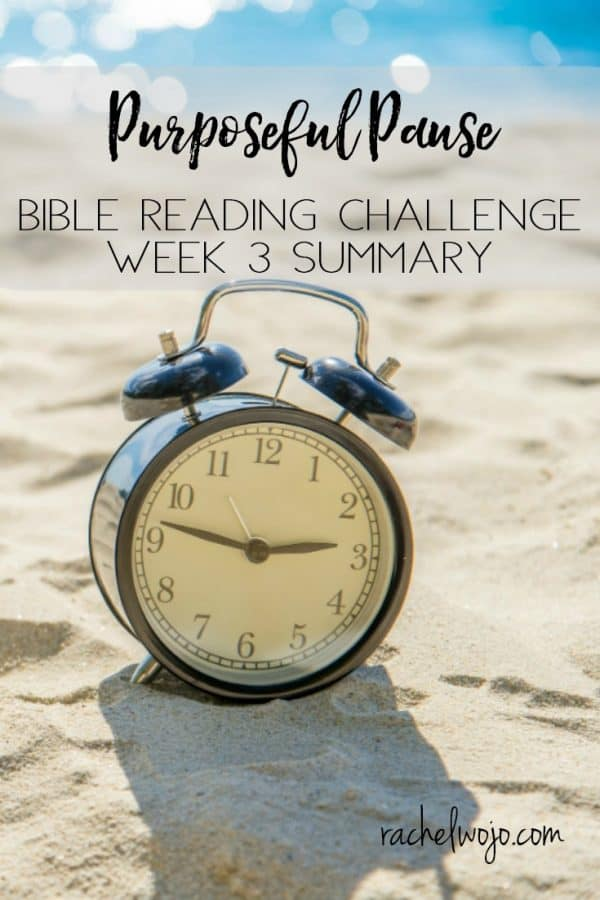 Purposeful Pause Bible Reading Challenge Week 3 Summary