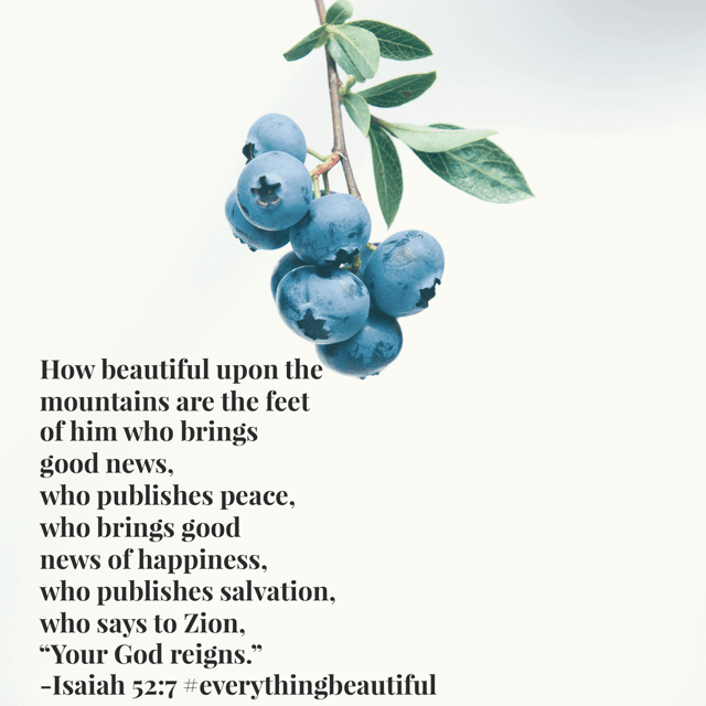 A devoted messenger who spreads good news reveals beauty beyond the mirror. Have a superb Saturday! #biblereadingplan #everythingbeautiful #biblereading