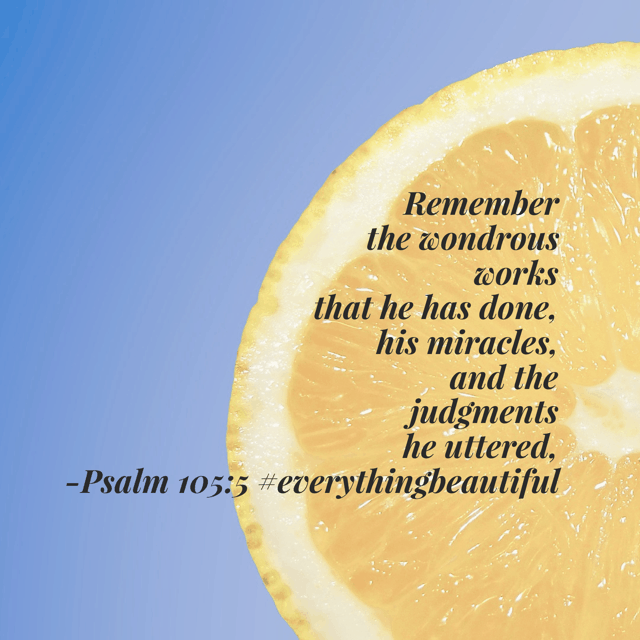 Discovering beauty can mean reflecting on all God has done in your life! What do you have that God has turned into beauty from the ashes? #everythingbeautiful #biblereadingplan #biblereading