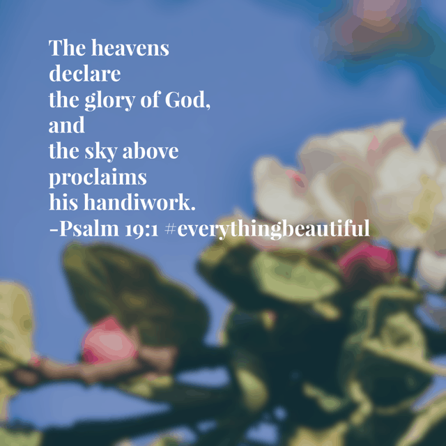It's a gray, rainy day here. But the heavens are still shouting his praise and the firmament is still doing it's beautiful thing, fulfilling what it was created to do- give God the glory and praise. Take that, Monday! #everythingbeautiful #biblereadingplan #biblereading