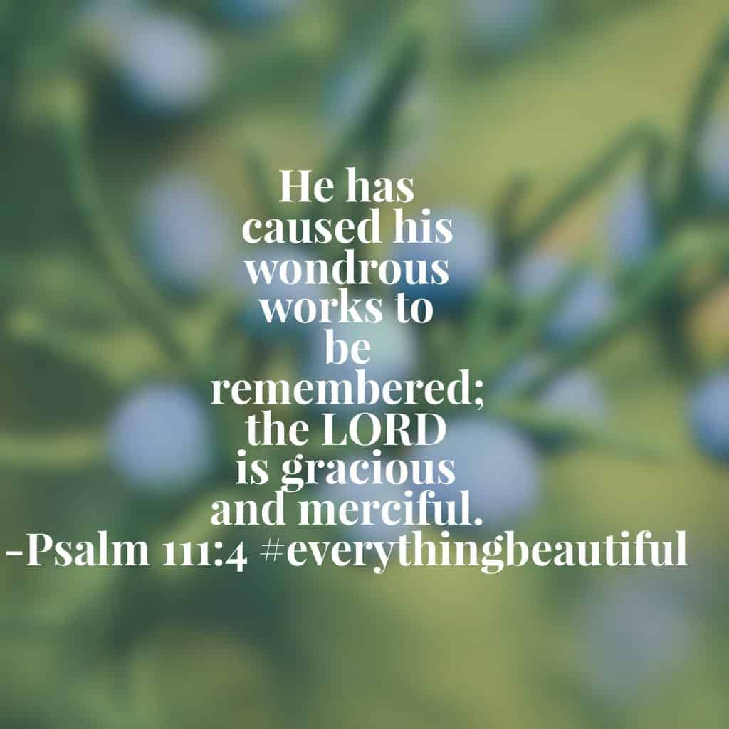 Some may think that becoming a beauty noticer is looking through rose-colored glasses. But God longs for his children to remember his splendor and wonder. He purposes to help us recall his beautiful works. Where will you look for them today? #biblereading #biblereadingplan#everythingbeautiful