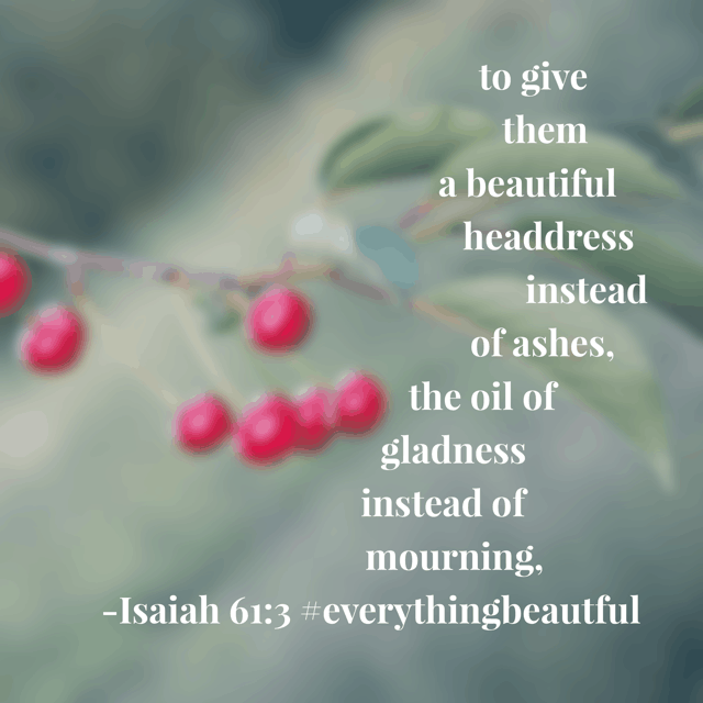 What our God does. He gives. He replaces. He takes the dead fragments of our leftover messes and transforms them into beautiful masterpieces. Where can you see his beauty today? #everythingbeautiful #biblereadingplan #biblereading