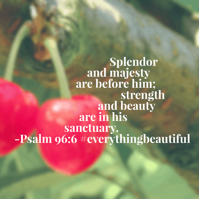 It's Friday! Resolve to see the beauty of the Lord in your day! Jesus, we ask that you open our eyes to see things as you see them. #everythingbeautiful #biblereadingplan #biblereading