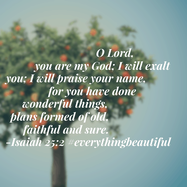 "Monday's aren't the easiest day of the week to recall the wonderful things God has done. But if we purpose this morning to look for his ""wonderful things,"" with confidence that he has always planned the best for his children, then it will be a great day! Have a marvelous Monday! #everythingbeautiful #biblereadingplan #biblereading"