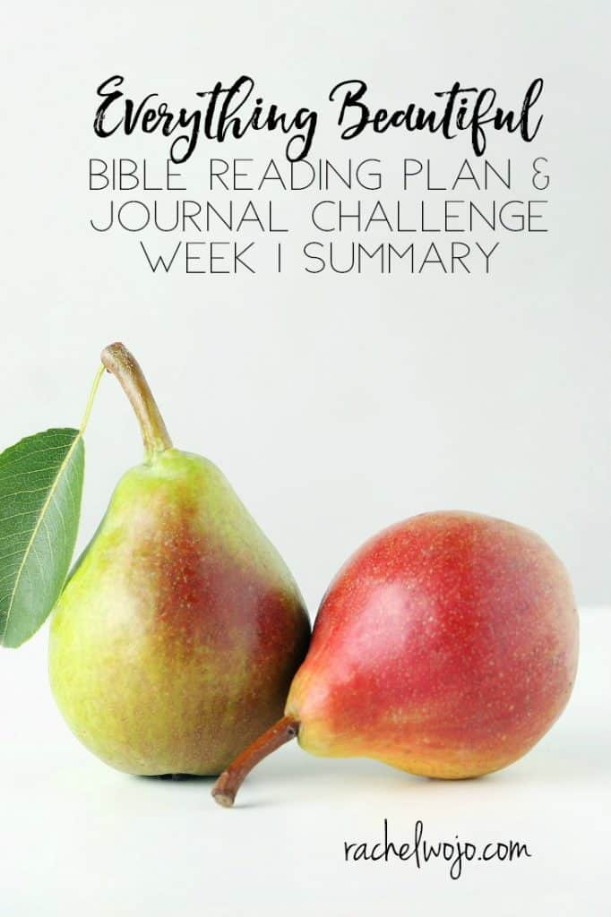 Welcome to the Everything Beautiful Bible reading challenge week 1 summary! I know it hasn't been quite a week since we began this month's Bible reading plan, but when I looked ahead, I felt that I should go ahead and summarize what we've read so far. I've read the quote that repetition is the key to learning and personally for me, I know it's true. With that thought, let's check out Everything Beautiful Bible reading challenge week 1 summary. Who's with me? :)