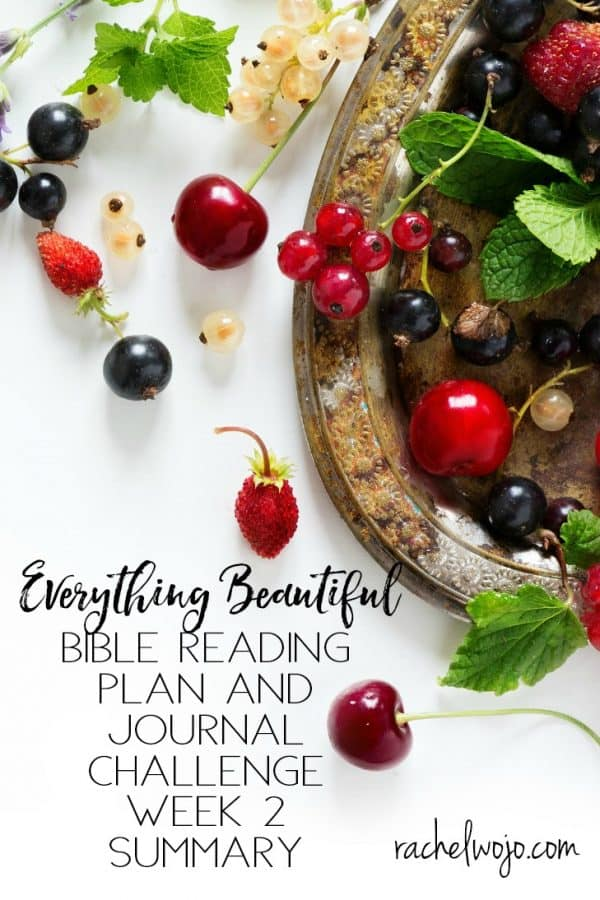 Everything Beautiful Bible Reading Challenge Week 2 Summary