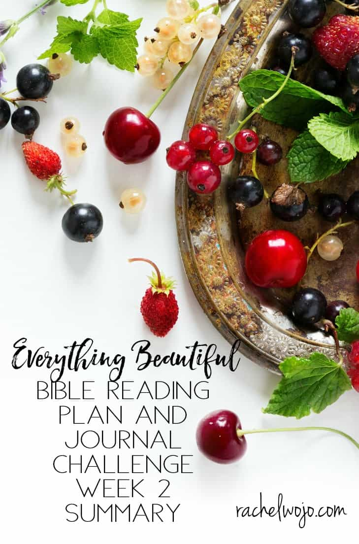 Everything Beautiful Bible Reading Challenge Week 2 Summary