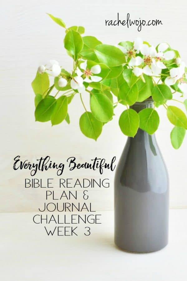 Everything Beautiful Bible Reading Challenge Week 3 Summary