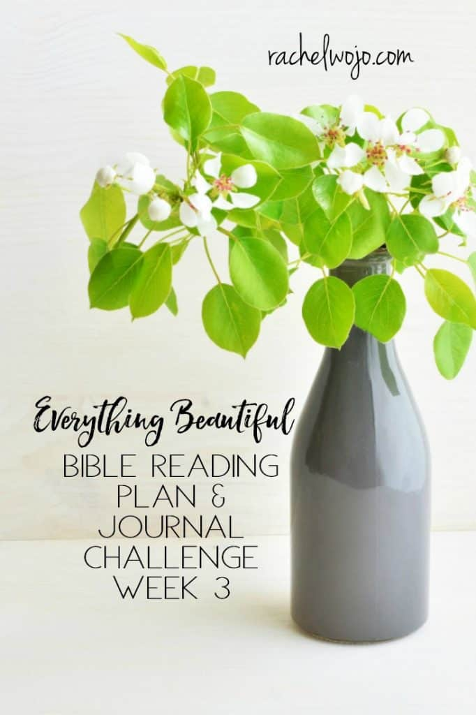 Welcome to the Everything Beautiful Bible reading challenge week 3 summary! I know I say this every month, but wow, the time flies so quickly and I can hardly believe we are three weeks into the Everything Beautiful Bible reading plan. I post these weekly reviews is to help all of us recall the lessons and blessings of the monthly Bible reading plan. Let's take a look at this week's Everything Beautiful plan, ready?