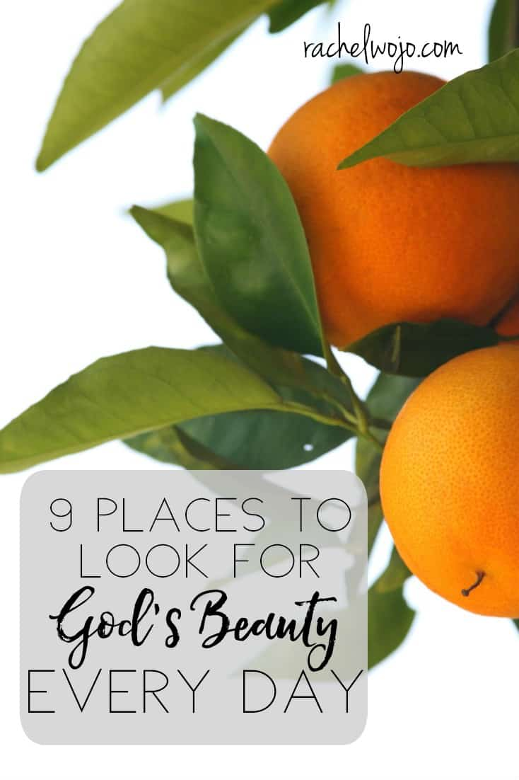 9 Places to Look for God's Beauty Every Day