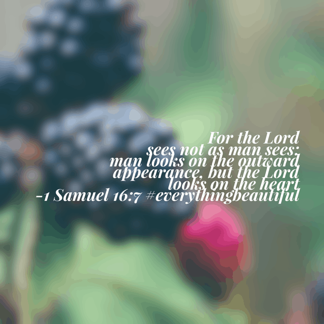 Samuel was looking for the one who seemed to fit the part. Kingly-looking. Tall. Broad shoulders. Sharp. You know, the guy who looks like he has his act together. But God was looking deeper. He was looking for character. Someone who had been faithfully tending to seemingly-menial tasks that were actual anything but menial. Someone who loved the ones he cared for and ferociously fought for them. Someone who had learned to use what he had rather than wish for what he didn't. And that is what made David everything beautiful. Where are you looking for beauty on this fabulous Friday? #everythingbeautiful #biblereadingplan #biblereading