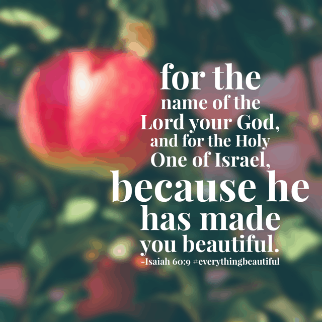 "The chapter title for today's #everythingbeautiful #biblereadingplan is ""the future glory of Israel."" The prophet was explaining what God had in store for his people. And he feels the same way about you and me. You are beautiful because you are His! Have a thriving Thursday! #biblereading"