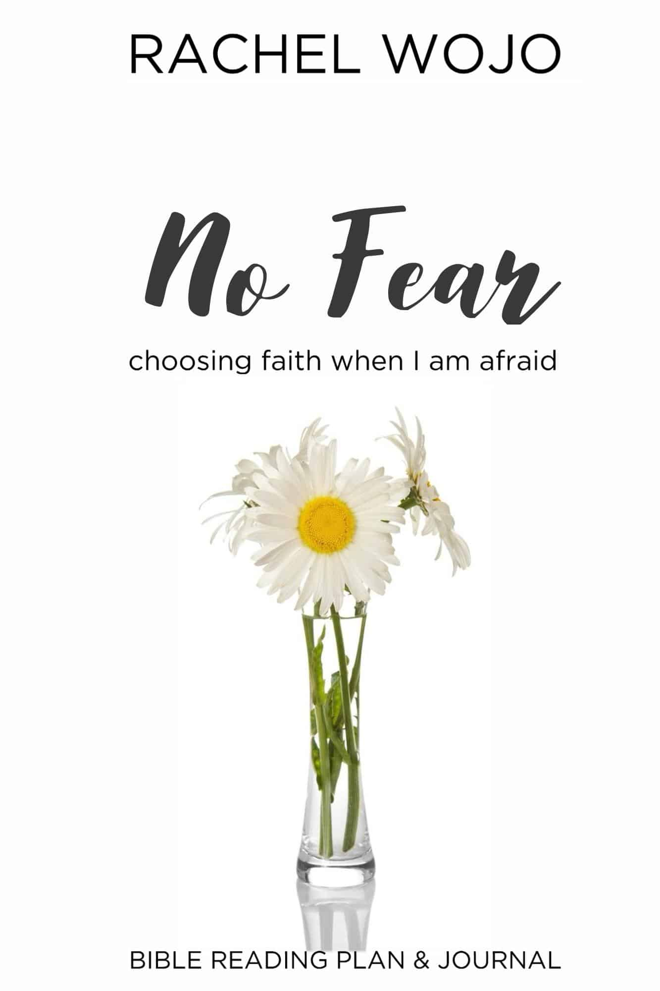 No Fear Bible Reading Plan and Journal Challenge - RachelWojo.com