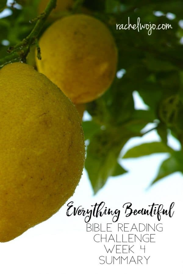Everything Beautiful Bible Reading Challenge Summary Week 4