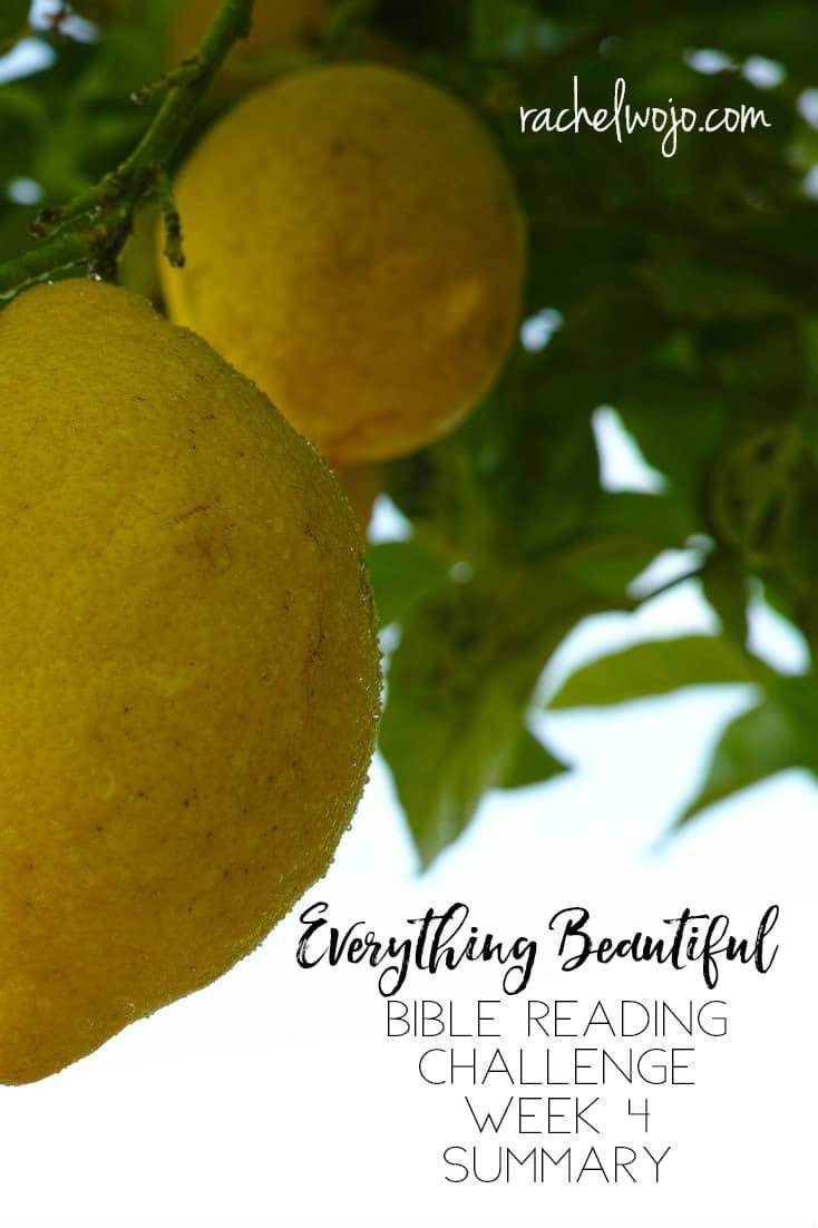 Everything Beautiful Bible Reading Challenge Summary Week 4