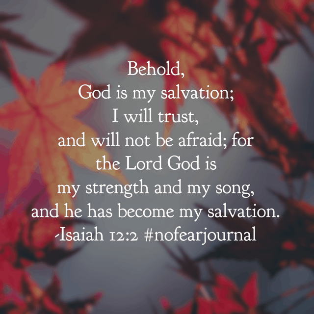 Give thanks. Make known his deeds among the people. Sing praise to your God! There is no need to be afraid; every ounce of strength you need for the journey ahead is available in HIS strength! Have a wonderful Wednesday believing God's Word to deliver you from fear and worry! #nofear #nofearjournal #biblereading #biblereadingplan