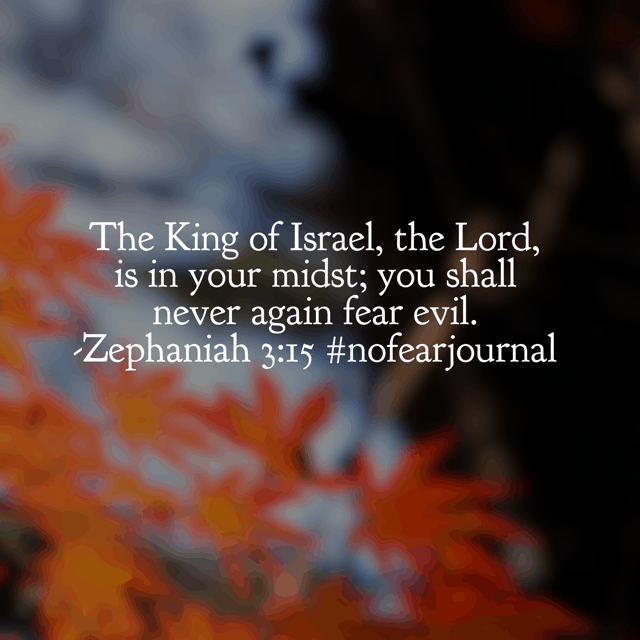 Jesus, let us become more aware of your presence in our lives. For it is when we recognize you are indeed with us, we are not afraid. #nofear #nofearjournal #biblereading #biblereadingplan