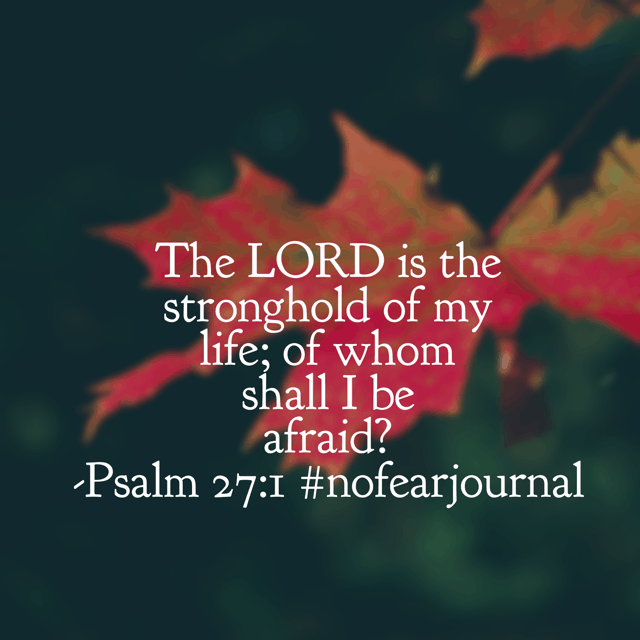 The Lord is the stronghold of my life. He holds my trust. He holds my courage. He holds my strength. He holds my hand. I have absolutely nothing to fear when my faith rests in him fully. Take God's Word personally today; he intends for you to do so! #biblereadingplan #biblereading #nofearjournal #nofear Day 14
