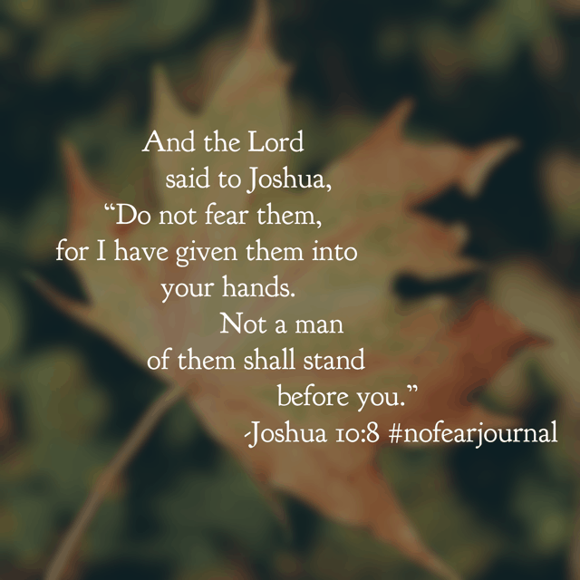 "Today's #nofear#biblereadingplan passage is Joshua 10:1-14 and if you've never read about the day the sun stood still, then don't miss out on God's Word today!! ""There has been no day like it before or since, when the Lord heeded the voice of a man, for the Lord fought for Israel."" Remember yesterday's passage? The battle is the Lord's! You do not know what tactic or strategy the Lord could use on your behalf. Let's not waste our energy fearing and fretting when this could be a day unlike any other with the Lord working on our behalf! Have a super Sunday knowing he is in control! #nofearjournal #biblereading"