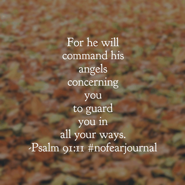 You are surrounded by spiritual soldiers whose sole function is to guard you fully. Your Father in heaven loves you that much! There is no need to be afraid of anything that comes your way today. Enjoy a thriving Thursday!#nofear#nofearjournal#biblereading#biblereadingplan