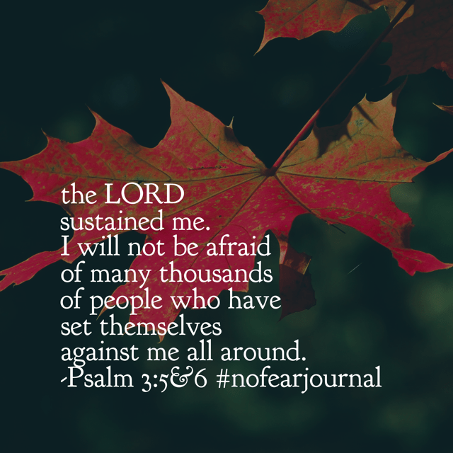The Lord sustained me. Again and again, he has never failed me and never will. When I was afraid, he sustained me. When the enemy towered over me in size, the Lord sustained me. When I lost my way, he stayed with me and kept me going. No matter how many people are against you in your faith journey, the Lord will always be for you. Take Tuesday with#nofear!#biblereadingplan#biblereading#nofearjournal