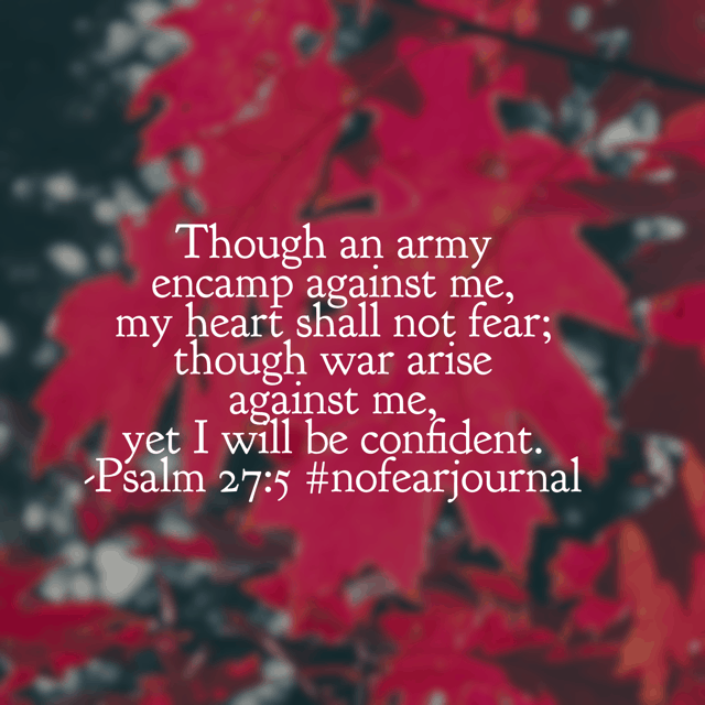 "Confidence says ""The LORD is my light and my salvation; whom shall I fear? The LORD is the stronghold of my life; of whom shall I be afraid?"" Asking the Lord to saturate my soul with confidence in him. Asking the same for you! Have a wonderful Wednesday. #nofearjournal #nofear #biblereading #biblereadingplan"