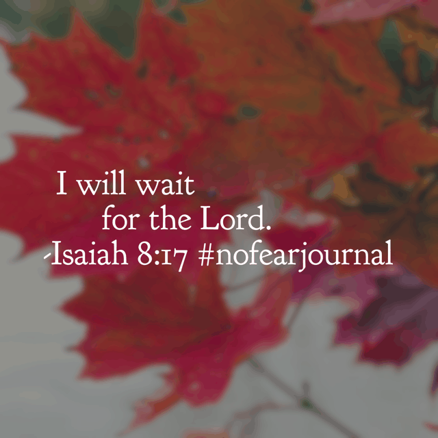 If you read today's#nofearjournal#biblereadingplan, then you know that it is all about understanding the difference between fearing the Lord out of respect and honor and fearing the Lord due to unconfessed sin. So many times, the reason we fear is because we are in a waiting mode. The enemy uses the wait to make us fear and doubt. Remembering that God has not changed, even when we wait, is the key to trusting him fully, without fear. Meditating on this today! Hope you're having a blessed Sunday!#nofear