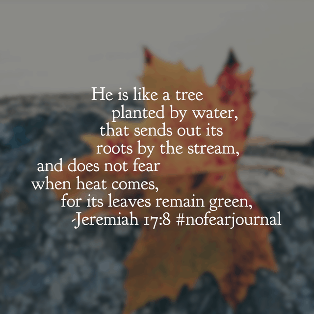 When we are rooted firmly, trusting in the Lord? We do not fear when the heat comes. The question becomes: how do we grow deep roots, so that we won't wilt in the tough times? Stay as close as we can to the Lord in our walk with him, growing each day deeper and deeper. Strong roots don't grow overnight. So if you are fighting fear? Deepen those roots! Have a marvelous Monday!#nofearjournal#nofear#biblereadingplan#biblereadingDay 30 (?!)