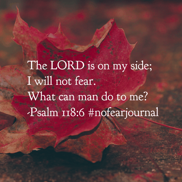 The Lord is on your side. You do not need to fear. So when fear comes knocking on your door; turn to the One at your side. Let your focus be in your Father. Let your faith be bigger than your fear! Can you believe we finished this month of #nofear #biblereadingplan and the #nofearjournal ?! Times flies when you're soaking in God's Word each day! Join us tomorrow as we begin the #withthanksjournal and #biblereadingplan !