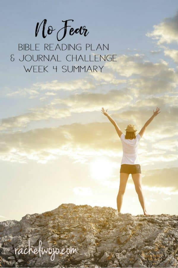 No Fear Bible Reading Challenge Week 4 Summary