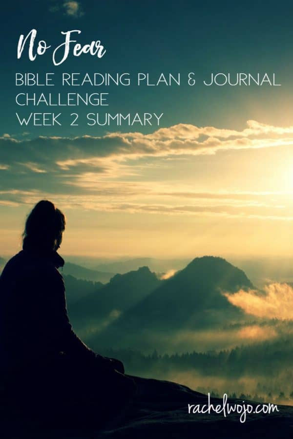 No Fear Bible Reading Challenge Week 2 Summary