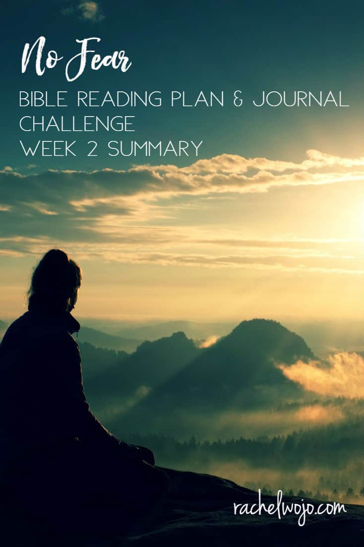 Welcome to the No Fear Bible Reading Challenge Week 2 Summary! Whew, that's a mouthful.