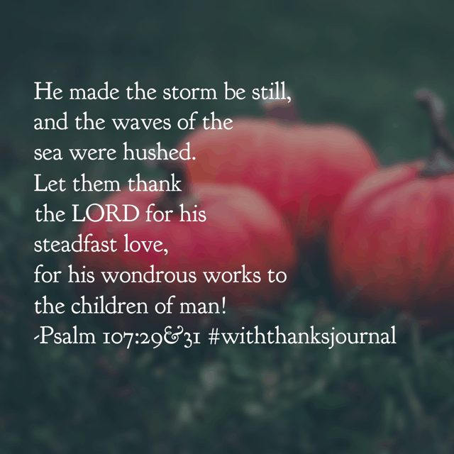 Jesus, there are so many different kinds of storms we face today. But we are so thankful that no matter the storm, you are in control! And you calm all the storms of life, even in the midst of them. Your peaceful presence is all we need. Thank you for it.