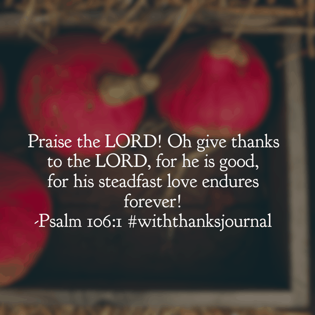 Praise the Lord! There is nothing like starting your day with that phrase. Hope your Wednesday is wonderful!#withthanksjournal
