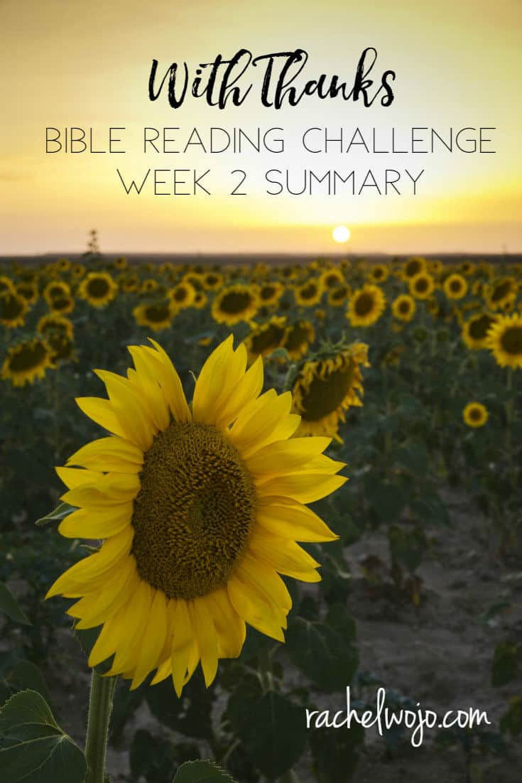 Welcome to the With Thanks Bible reading challenge week 2 summary! Wow- time certainly has flown; we're already on day 20 of this challenge today. Before we head too far into the week, let's glance back at the passages we've read over last week. Why is it so important to review what we read? To retain it! After all, the purpose of reading is to be changed! I've experienced changes in my heart over the course of this Bible reading plan and I pray you have too