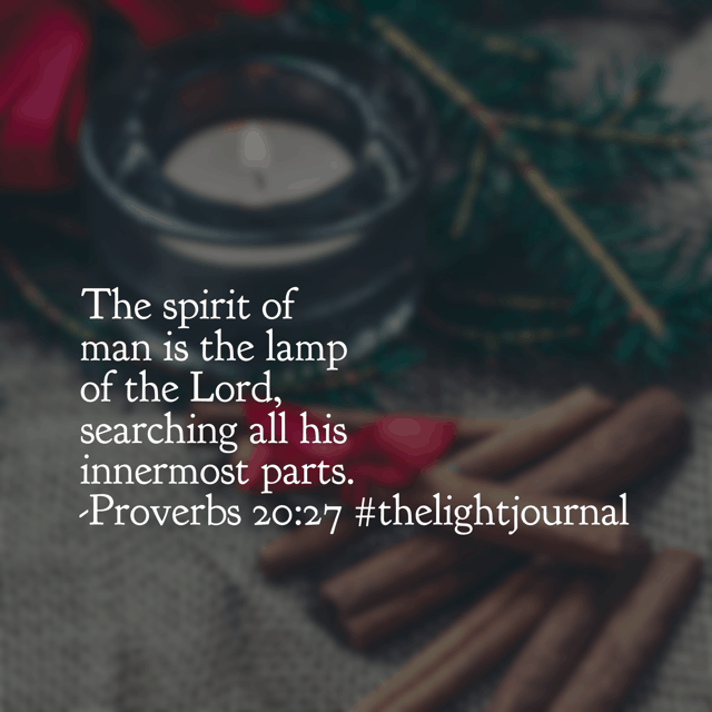 When the Lord shines his light into our souls, we are exposed. Is it a heart reflecting his love that he sees? That's the thought I'm pondering this morning. Happy Friday!#thelightjournal#biblereadingplan#goodmorninggirls#hellomornings#biblereading