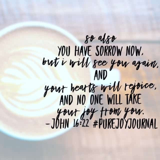Whatever sorrow or suffering the world brings to you today, it is temporary. No one can take away your joy in the promises of Jesus! Have a fab Friday meditating on this fact!#biblereadingplan#biblereading