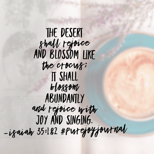 Isaiah prophesies over his people and gives them a word from the Lord like no other in today's #purejoyjournal #biblereadingplan . No longer would they be scavengers to meet their needs. This desert place where they lived was about to be completely transformed from dry and barren to desirous and beautiful.