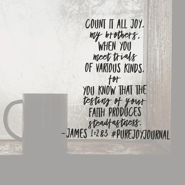 Trials of various kinds. James doesn't describe the trials. Maybe because we don't need a detailed description to know that no matter the trial, counting it joy is testing. I'm pondering whether or not I'm allowing the trials to produce steadfastness today