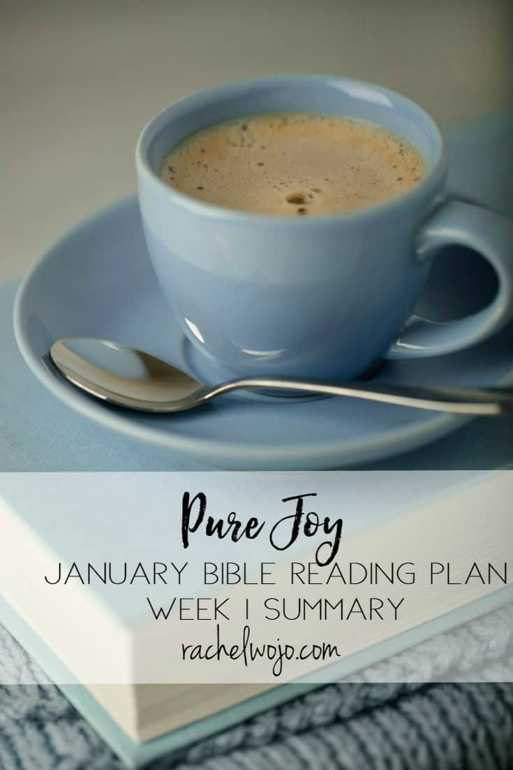 "Welcome to the January 2018 Bible Reading Week 1 Summary! What a great beginning we've experienced in the Pure Joy Bible reading plan. Many readers have mentioned your one word for 2018 is ""joy"" and I just love how the Lord is working through this study to encourage your hearts. Also, the Facebook group is moving and grooving. I plan to post a live video in the group each week and fresh content is being shared each day. Why do I post this review each week? So that we can retain what we've learned! Let's check out week 1 of Pure Joy Bible reading plan."