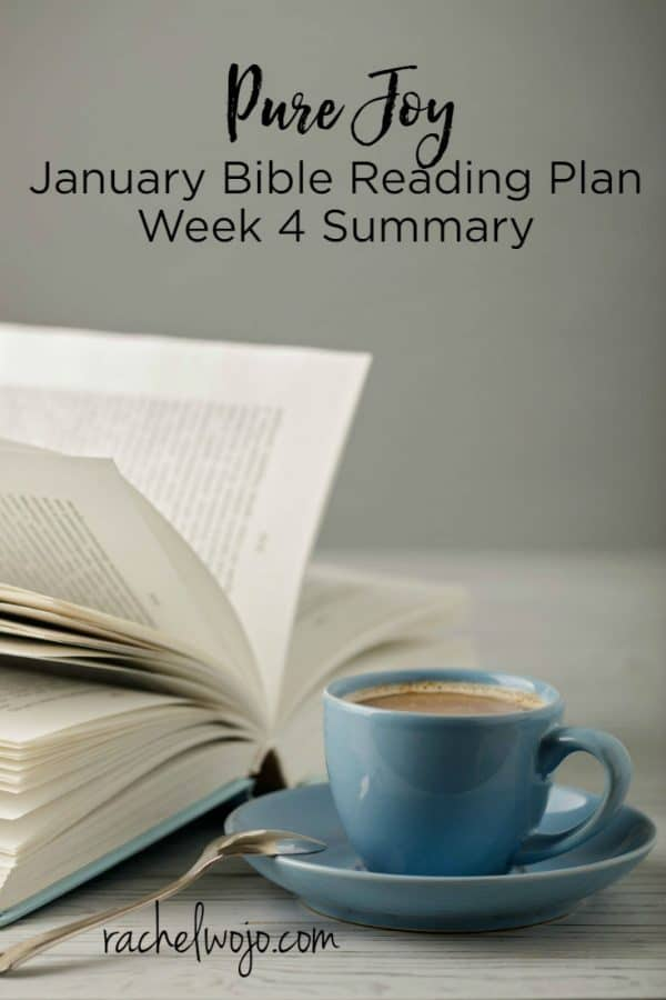 January 2018 Bible Reading Week 4 Summary