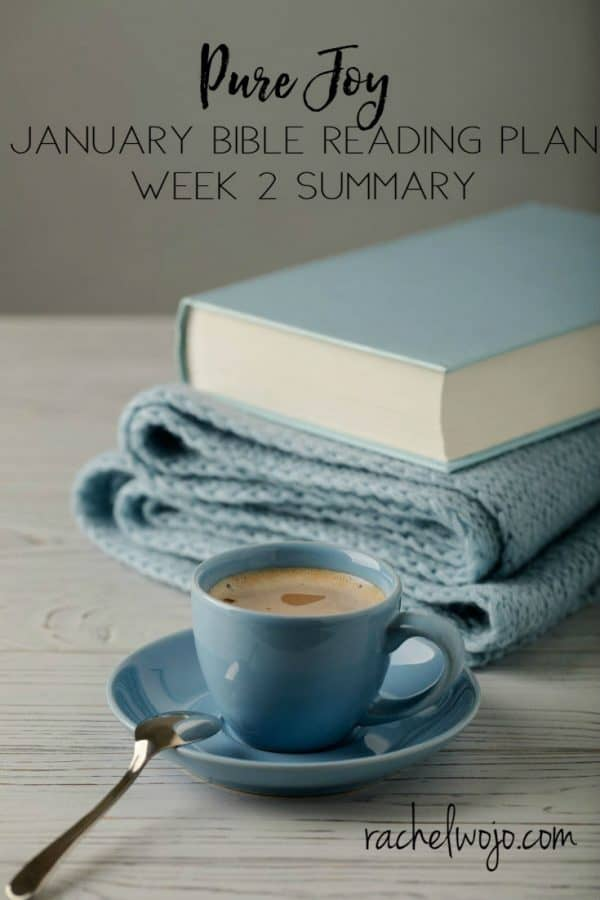 January 2018 Bible Reading Week 2 Summary