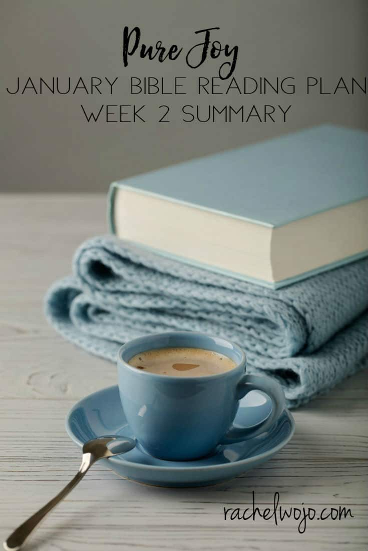 Welcome to the January 2018 Bible reading week 2 summary! If this is your first time here, we are a community of Bible believers who read God's word each day. Each month we follow a monthly Bible reading plan and each week, we glance back together over what we read in order to retain it.