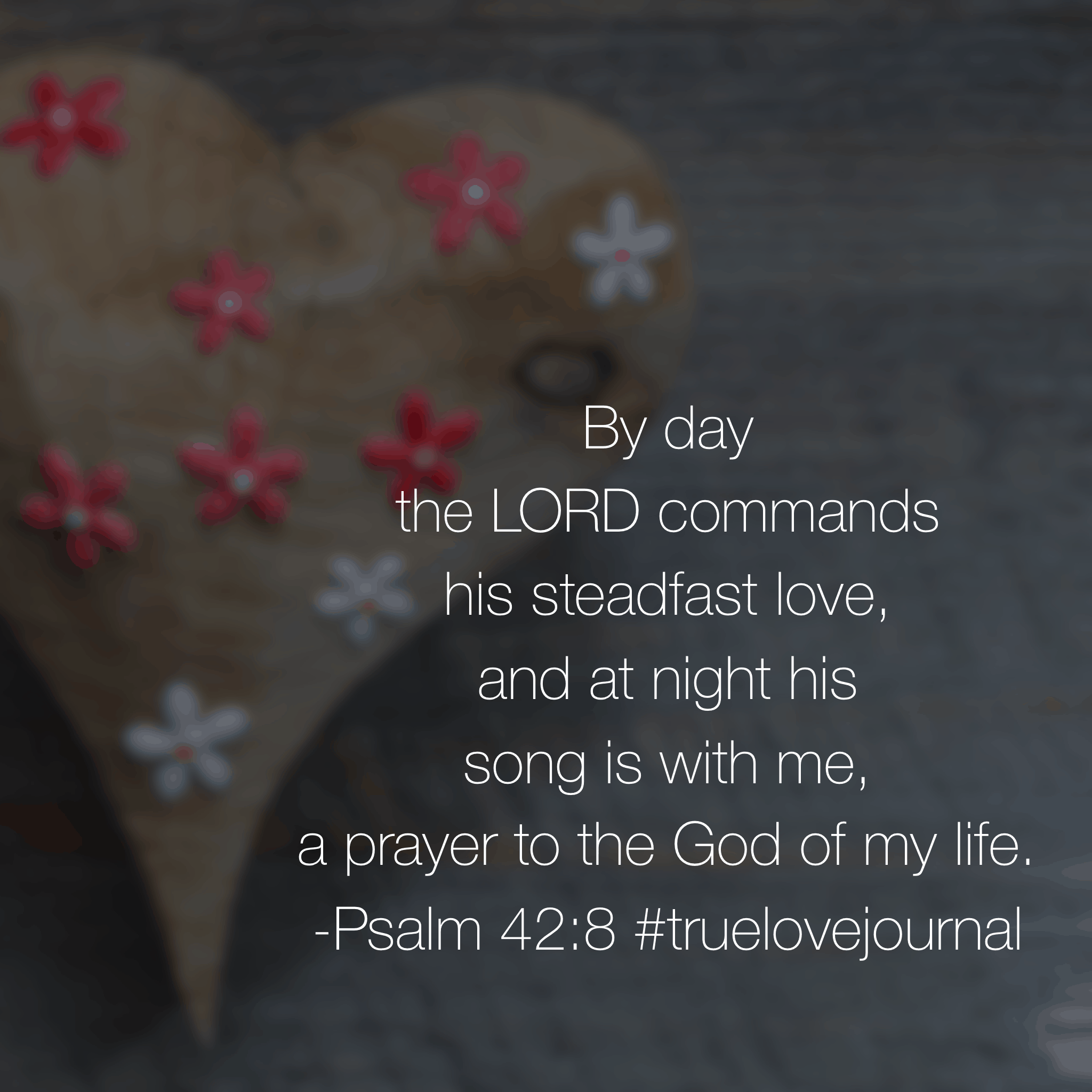 Whether day or night, his love never leaves us. The love you recognized in worship on Sunday is the same love that will carry you through Monday. Look for his love as you go throughout today! #truelovejournal#biblereadingplan Day