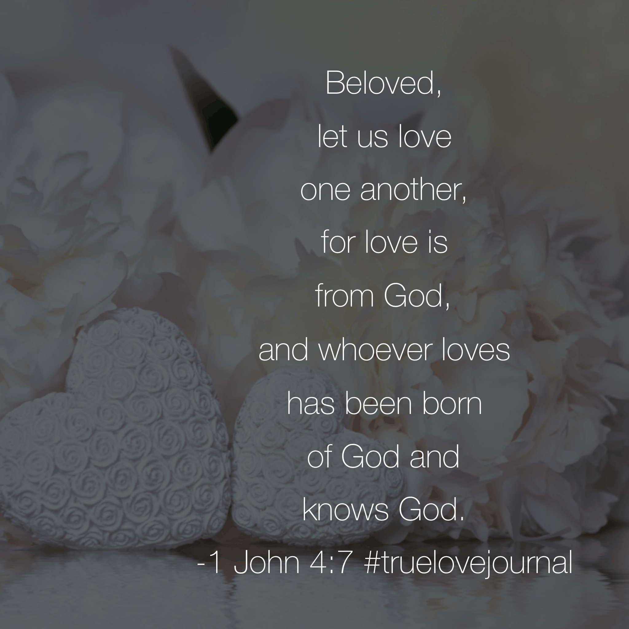 It's Tuesday. What could happen if we chose to live out the love God has placed in us? If we loved others with the same love that has been lavished on us? That kind of love has been placed in our hearts by the Father! Love out loud today! #biblereadingplan