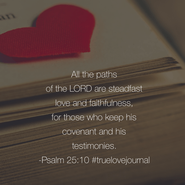 I'm so very thankful for his paths this morning. Knowing that he will never leave me to walk the journey alone is a precious gift of his love. Happy Valentine's Day!#truelovejournal#biblereadingplan#happyvalentinesdayDay 14