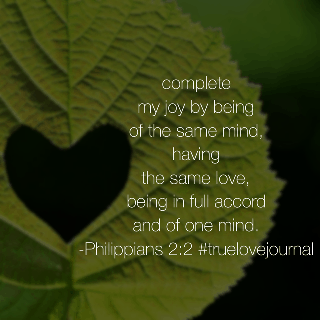 "Philippians 2:1 ""So if there is any encouragement in Christ, any comfort from love, any participation in the Spirit, any affection and sympathy..."" then in verse 2, Paul explains the icing on the cake. Be someone's icing today and it will be a thriving Thursday! #truelovejournal #biblereadingplan"